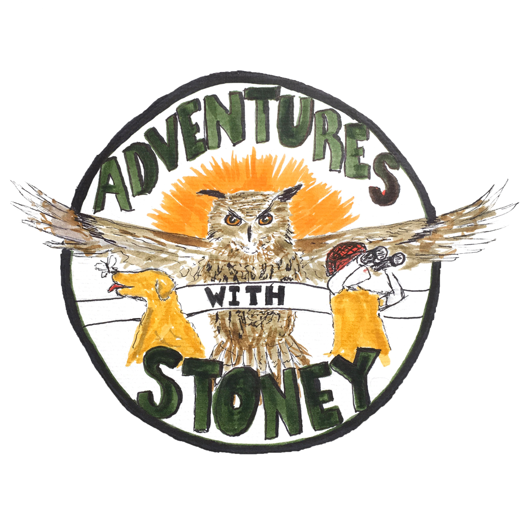 Adventures With Stoney Home